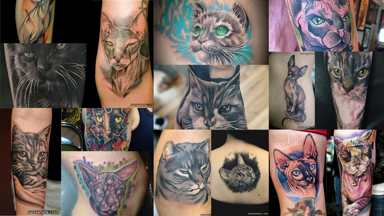 znachenie-tattoo-koshka.jpg