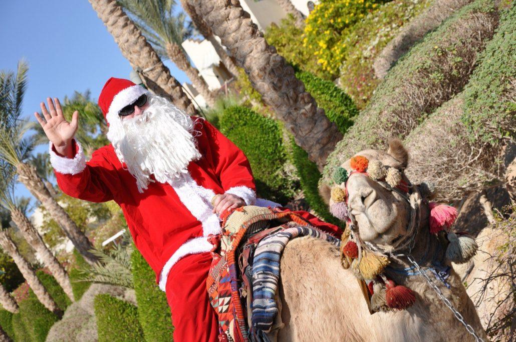 Новый год в Египте 2019. Отели с программой, цены, ранее бронирование картинки